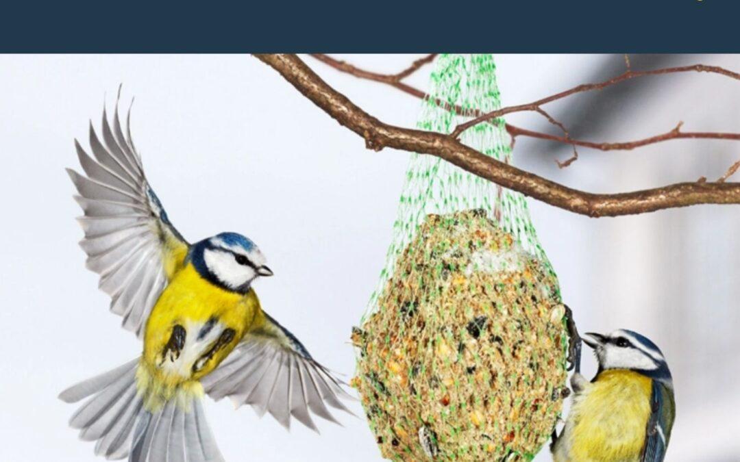 """Szkolna akcja charytatywna """"pomóżmy ptakom przetrwać zimę"""""""